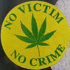 No Victim No Crime sticker